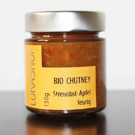 Bio Chutney Streuobst Apfel aus der Weststeiermark by Candarila