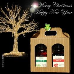 Weihnachtsgeschenkbox-Fruchtessige aus Bio Himbeer & Kiwi by Candarila