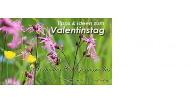Tipps & Ideen für einen gelungenen Valentinstag
